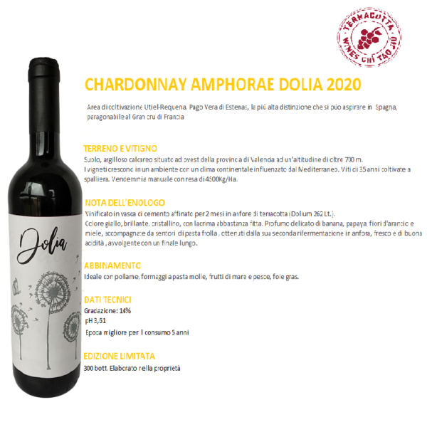 Dolium Chardonnay Terracotta Wines